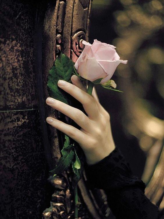 kiron single muslim girls Free dating site вторник, 17 мая 2011 г ♥ ♀ ♥ 100% free dating ♥ ♂ .